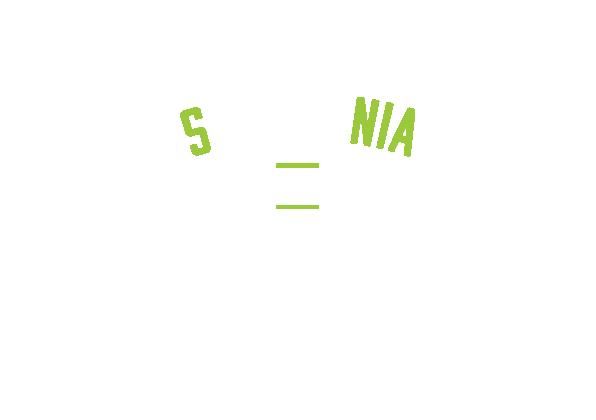 Biathlon Pokljuka SLIDER logo